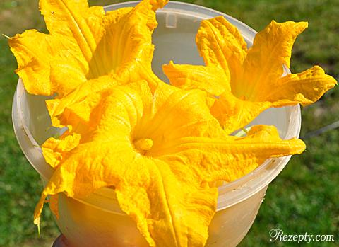 цветы кабачков в кляре рецепт